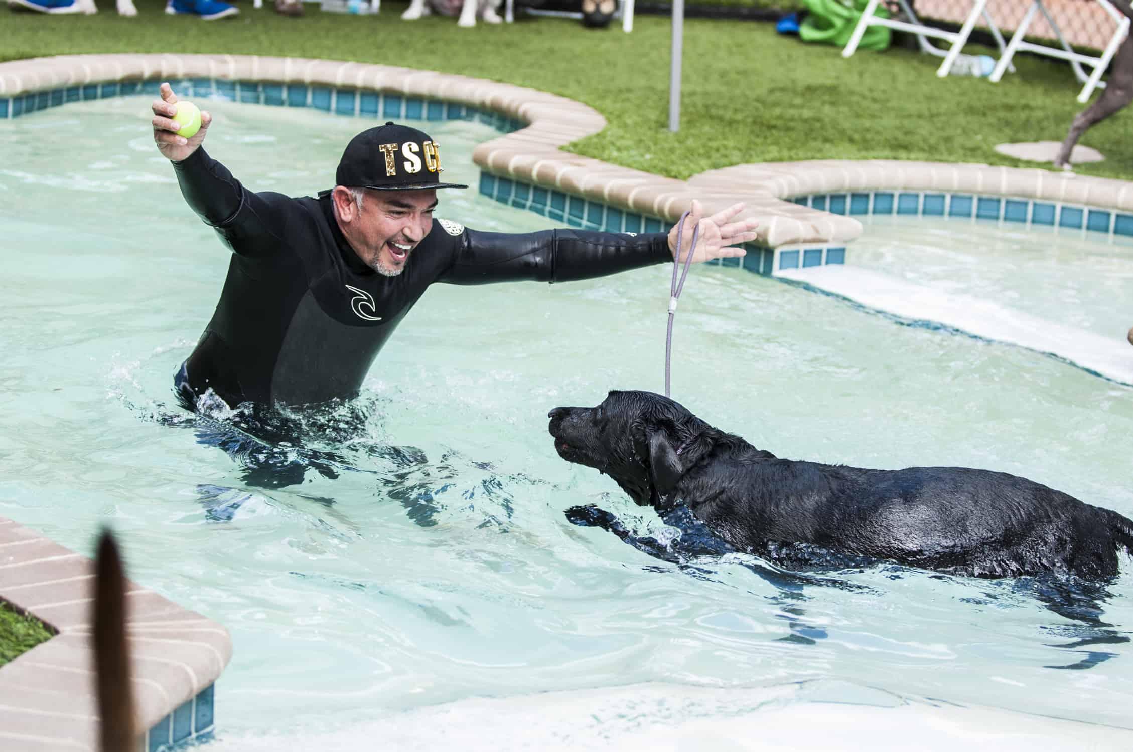 Dog Training in Fort Lauderdale, FL