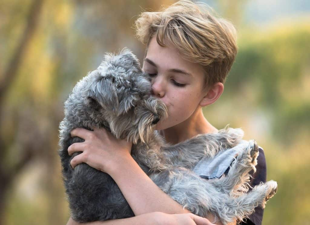 A blond boy holding his small grey dog and giving him a kiss